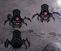 Araignée des caves.jpg