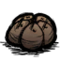 Cooked Seed Pod.png