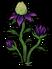 Potato plant med