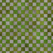 Lawn Turf Texture