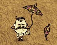 Jolie ombrelle ig