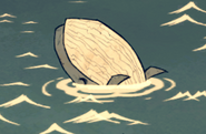Sleeping Blue Whale