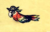 Попугай-пират спит