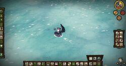 Shipwrecked 049