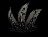 Чумной дикий ягодный куст