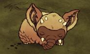 Koalephant endormi