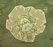 Отшельница крабов заморожена