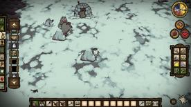 Camp de morses hiver
