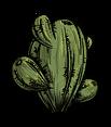 Oasis Cactus.png