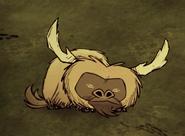 Спит бифало
