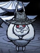 Заяц в соломенной шля.пе