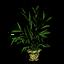 Palm Plantholder