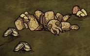 Убитый лобстер