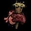 Проколотое сердце