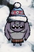 Свин в зимней шапке