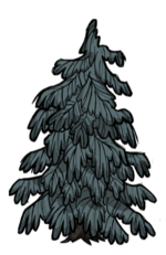 Lumpy Evergreen.png