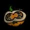 Hot Pumpkin.png