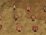 Мраморный куст