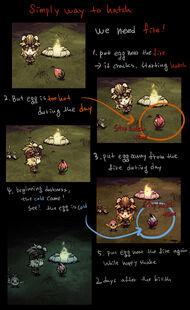 Высиживание яйца феникса