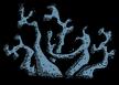 Пещерный лишайник