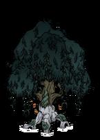 Узловатое дерево 3