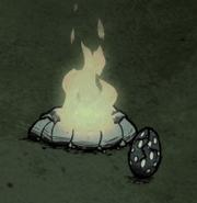 Яйцо ночью