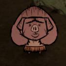 Свин испуган