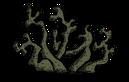 Пещерный лишайник старый
