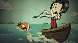 Shipwrecked requin