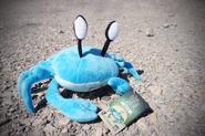 Formated Crabbit
