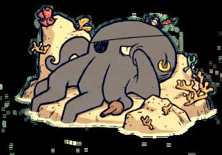 Yaarctopus