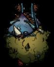 Навозный жук спит на шаре