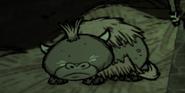 Спит детёныш бифало
