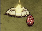 Trứng Chân Cao