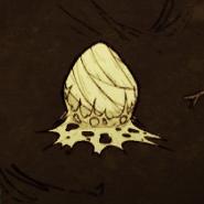 Repaire d'araignée de niveau 1