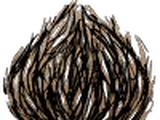 Cây Cỏ Lăn