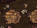 Ruche d'apiculteur