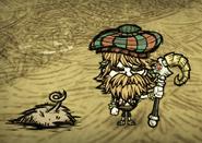 Woodie pigskin dst