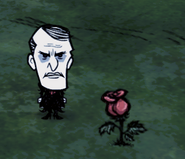 Роза в игре