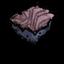 Красный грибковый дёрн.png
