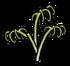 Garlic plant rot