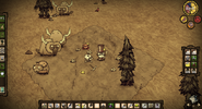 Don't Starve Miner's Camp with 3 Treeguards