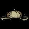 Puppy Cap Icon