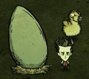 Уилсон около яйца