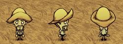 Chapeau de pluie Warly.png