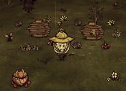 Пример типичного пчеловода