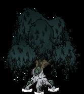 Узловатое дерево 2