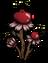 Гранат растение.png