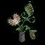 Traps Plantholder