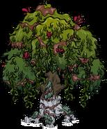 Цветущее узловатое дерево